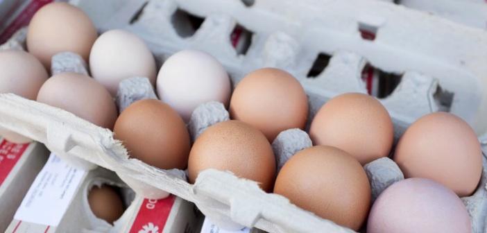 yumurta-bozulma