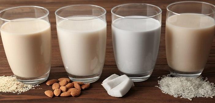 Normal Süt Yerine Kullanabileceğiniz Süt Çeşitleri