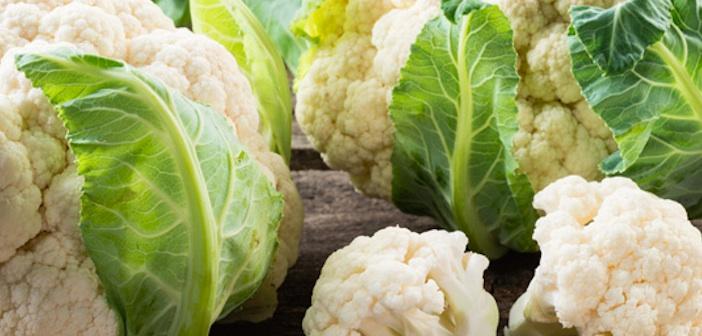 organik-sebzeler