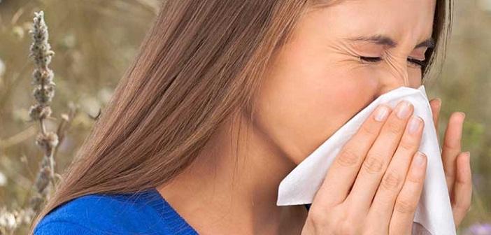 toz-alerjisi