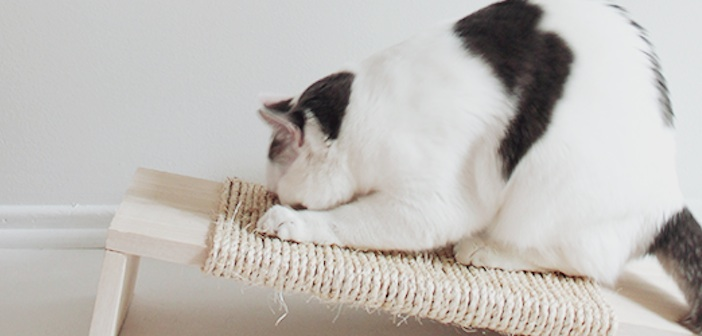 kedi-tirmalama-tahtasi