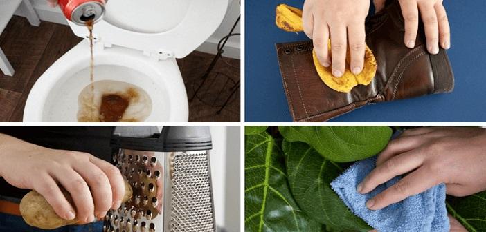 yiyecekle-temizlik