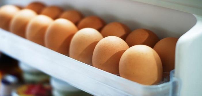 yumurta-buzdolabi